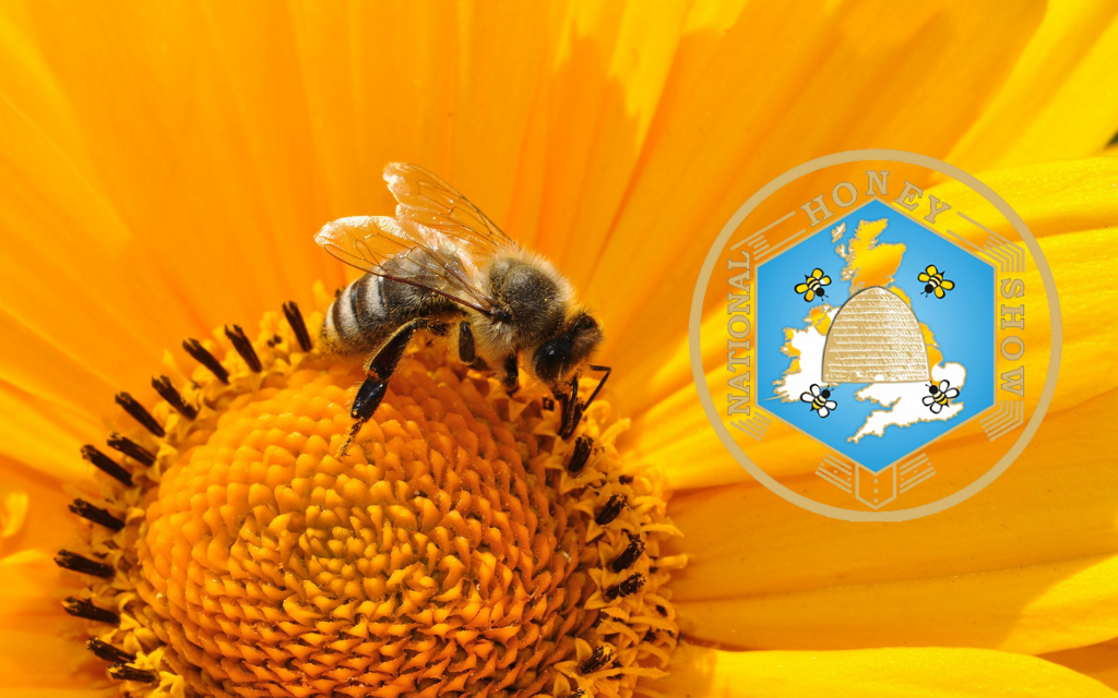 National Bee Day